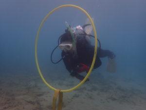 沖縄 近海 東海岸 レッドビーチ AOW講習 ダイビング
