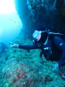 沖縄 ダイビング 万座のサメを指さし