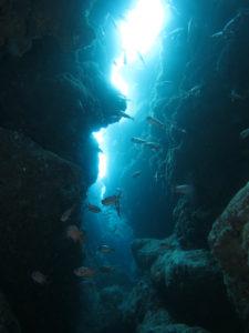 沖縄 ダイビング ミニドリームホール