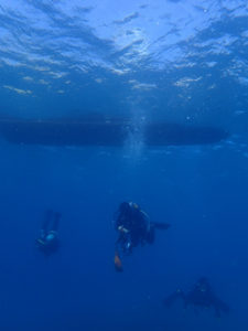 沖縄 本島近海 ダイビング ファンダイビング 嘉手納沖