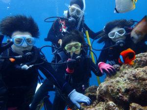 沖縄 恩納村 青の洞窟 真栄田岬 ダイビング 体験ダイビング