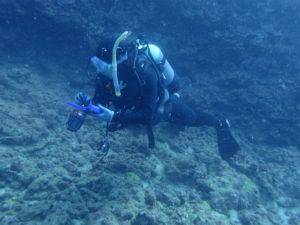 沖縄 ダイビング AOW