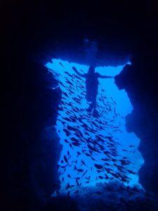 沖縄 万座 恩納村 ダイビング ファンダイビング ボートダイビング