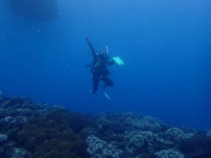沖縄 宜野湾 ダイビング 講習 ボートダイビング AOW
