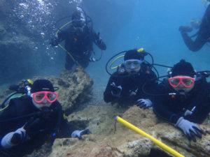 沖縄 沖縄本島 本部 ゴリラチョップ ダイビング 体験ダイビング ビーチダイビング