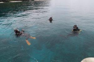 沖縄 慶良間 慶良間諸島 ダイビング ファンダイビング 体験ダイビング ボートダイビング PADI講習 DM講習