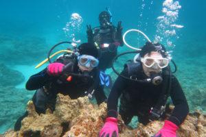沖縄 慶良間 慶良間諸島 ダイビング ファンダイビング 体験ダイビング ボートダイビング