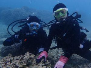 沖縄 崎本部 ゴリラチョップ ダイビング 体験ダイビング ビーチダイビング