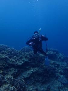 沖縄 東海岸 宜野座 漢那 ダイビング ボートダイビング ファンダイビング