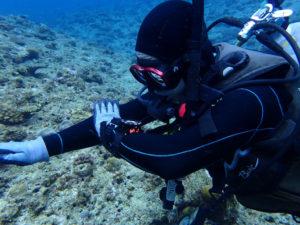 沖縄 万座 恩納村 ダイビング ボートダイビング ファンダイビング OW講習 PADI講習