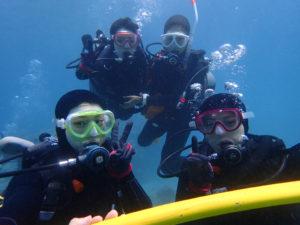 沖縄 崎本部 ゴリラチョップ 本部 ダイビング ビーチダイビング 体験ダイビング
