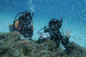 沖縄 慶良間 慶良間諸島 ダイビング 体験ダイビング ファンダイビング 座間味