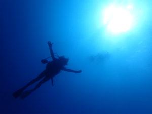 沖縄 ダイビング 慶良間 自社船 FUNダイビング ドリフト