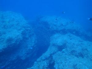沖縄 残波 読谷 ダイビング ファンダイビング ボートダイビング ドリフトダイビング