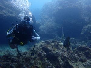 沖縄 ダイビング 真栄田岬 青の洞窟