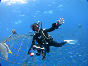 沖縄 残波 ジンベエザメ ジンベイザメ ボートダイビング ファンダイビング ダイビング