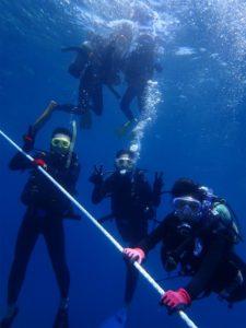 沖縄 ダイビング 慶良間 体験ダイビング FUNダイビング ドリフト