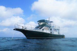 沖縄 ダイビング ボートダイビング 自社船 アルファダイブ