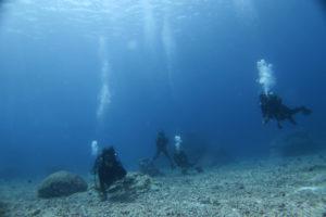 沖縄 慶良間 慶良間諸島 ファンダイビング ボートダイビング