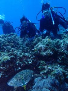 沖縄 慶良間 慶良間諸島 自社船 ファンダイビング ボートダイビング ダイビング 体験ダイビング