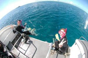 沖縄 慶良間 慶良間諸島 自社船 ファンダイビング ダイビング 自社船 体験ダイビング