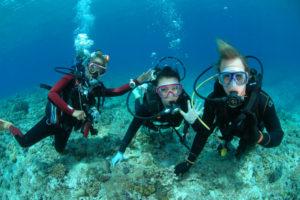 沖縄 ダイビング 慶良間 体験ダイビング 自社船 ベータ号