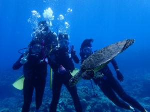 沖縄 慶良間 慶良間諸島 自社船 ファンダイビング ボートダイビング ダイビング 自社船 体験ダイビング