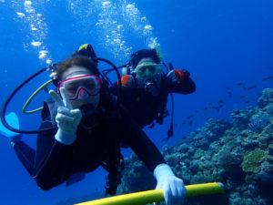 沖縄 ダイビング 慶良間 体験ダイビング ダイビング ボートダイビング 自社船