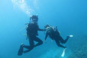沖縄 慶良間 慶良間諸島 ダイビング ボートダイビング ファンダイビング 自社船
