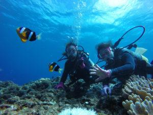 沖縄 沖縄本島 西海岸 砂辺 嘉手納 北谷 ダイビング ボートダイビング 体験ダイビング 自社船