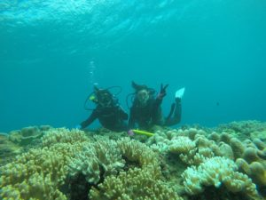 沖縄 北谷 砂辺 宮城海岸 ダイビング ビーチダイビング 体験ダイビング