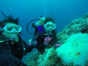 沖縄 沖縄本島 西海岸 砂辺 嘉手納 北谷 ダイビング ボートダイビング 体験ダイビング ファンダイビング 自社船