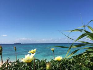与論島 沖縄本島 アルファダイブ ダイビングツアー ダイビング