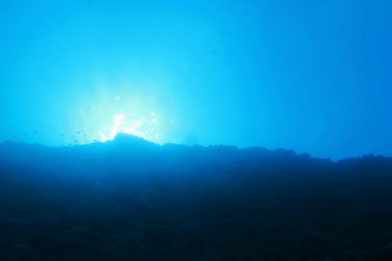沖縄 読谷沖 嘉手納沖 ボートダイビング ダイビング ファンダイビング 自社船