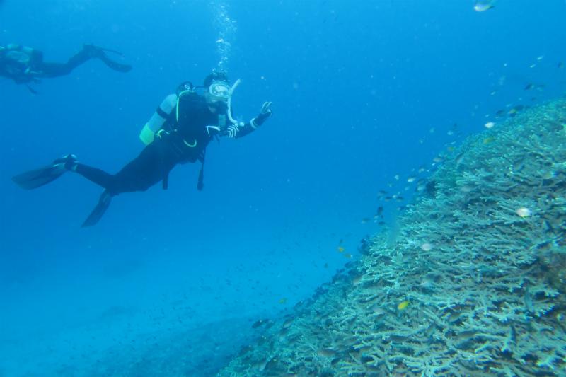 沖縄 慶良間 慶良間諸島 ダイビング ボートダイビング ファンダイビング 自社船 AOW PADI 講習