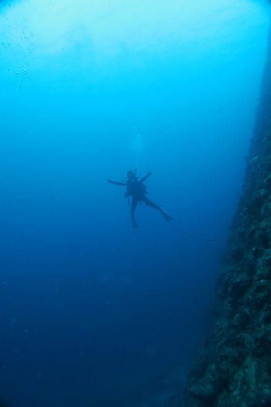 沖縄 万座 瀬良垣 恩納村 ダイビング ボートダイビング ファンダイビング