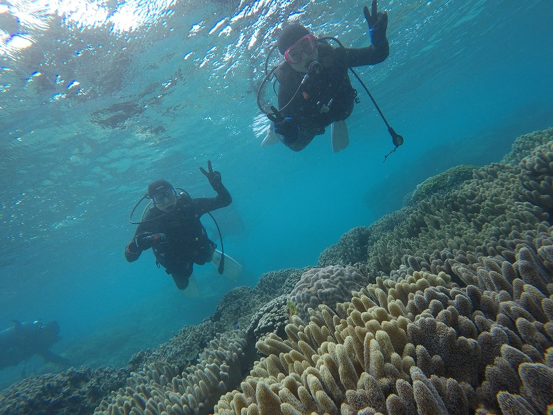 沖縄 ダイビング 体験ダイビング ビーチ