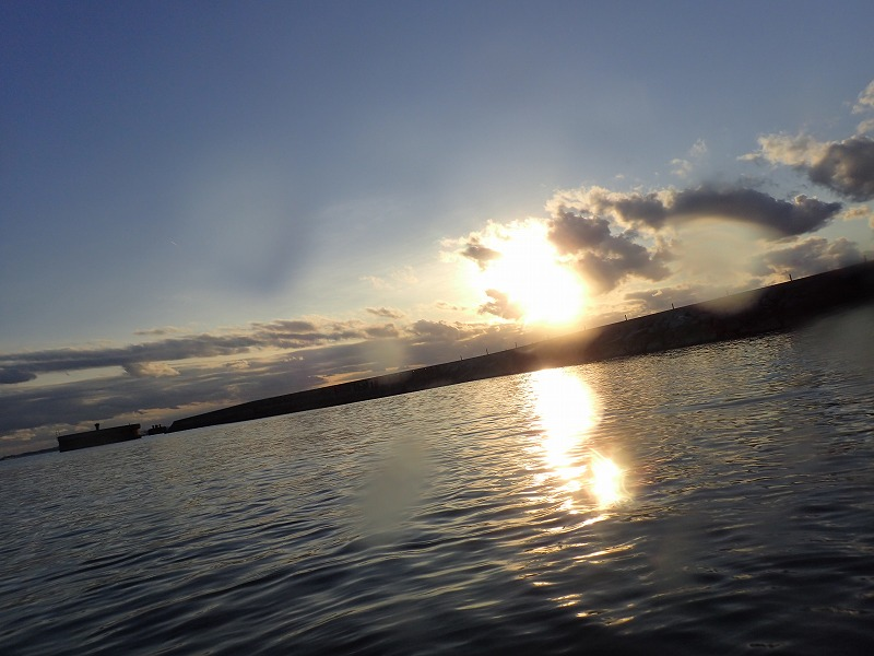 沖縄 ダイビング レッドビーチ FUNダイビング ウミウシ
