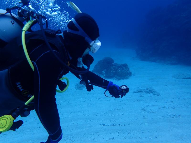 沖縄 慶良間 慶良間諸島 ダイビング ボートダイビング ファンダイビング 自社船 体験ダイビング PADI OW 講習