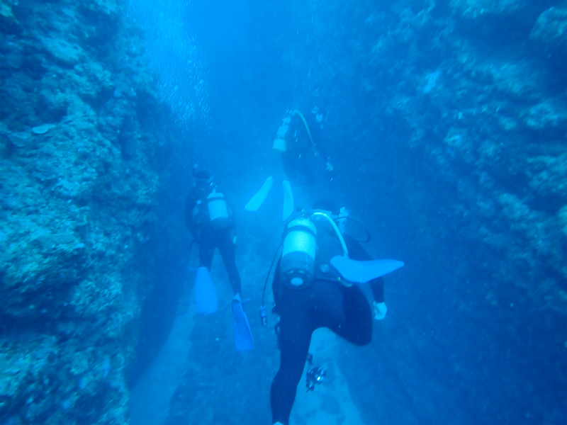 沖縄 恩納村 沖縄本島 ダイビング ボートダイビング ファンダイビング