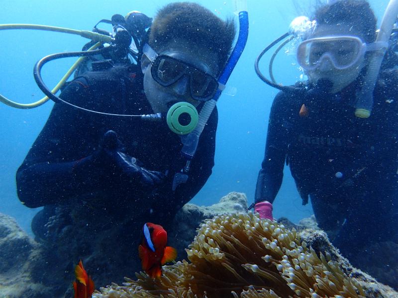 沖縄 沖縄本島 読谷沖 ボートダイビング ダイビング 体験ダイビング