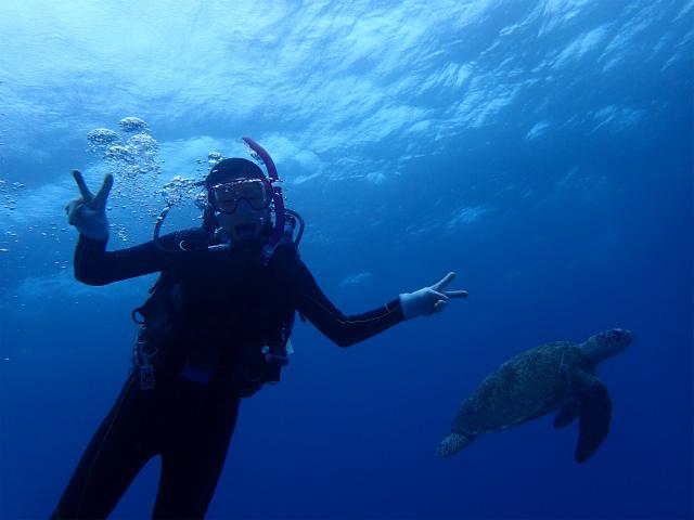 沖縄 ダイビング 慶良間 体験ダイビング AOW講習 PADI