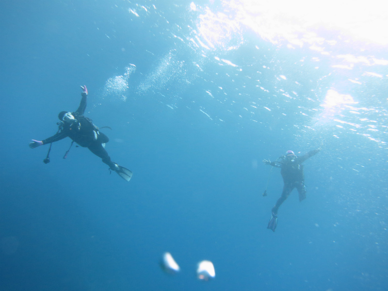 沖縄 本島 南部 糸満 喜屋武岬 ボートダイビング ダイビング ファンダイビング
