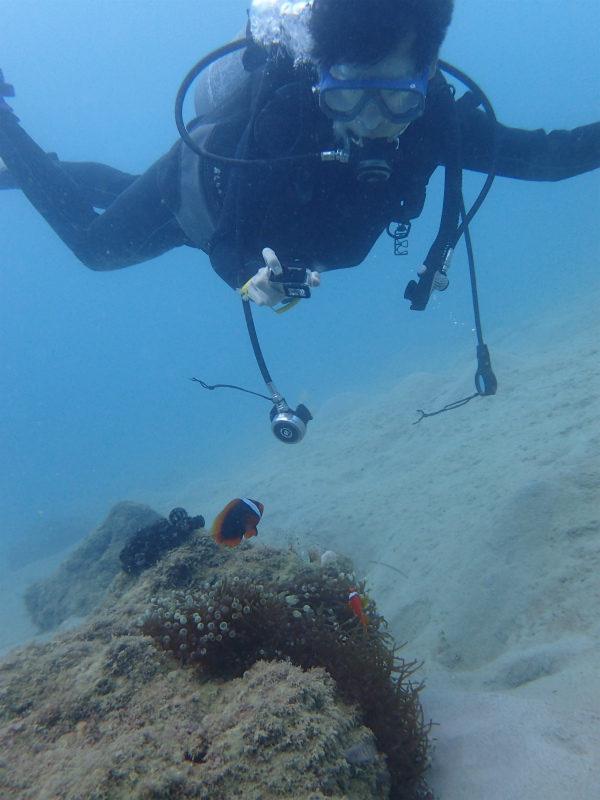 沖縄 本島 東海岸 金武 ダイビング ビーチダイビング ファンダイビング