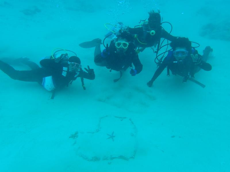 沖縄 沖縄本島 崎本部 ダイビング ビーチダイビング 体験ダイビング ゴリラチョップ