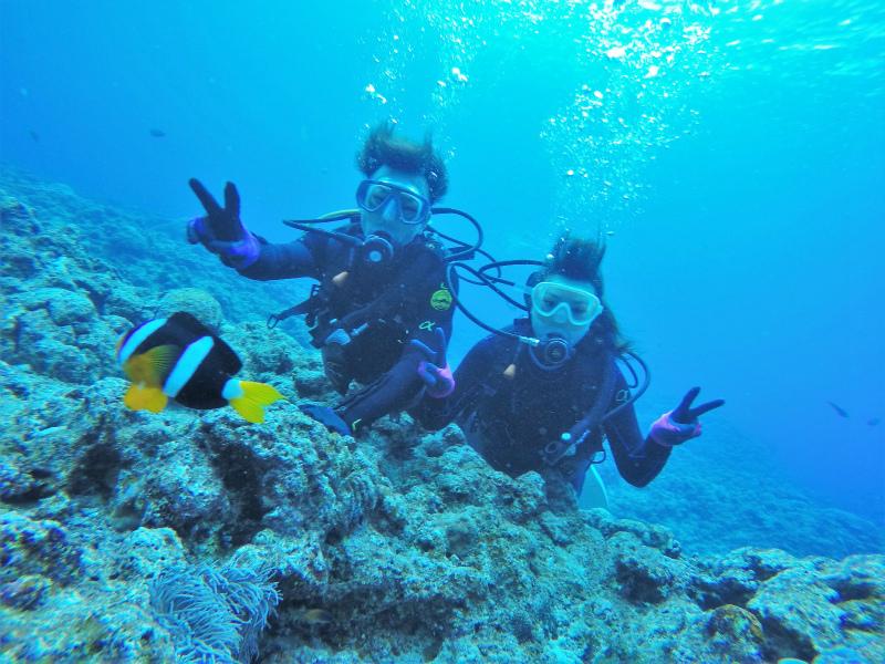 沖縄 ダイビング 真栄田岬 青の洞窟 ビーチダイビング 体験ダイビング