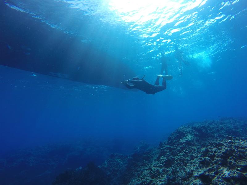 沖縄 慶良間 慶良間諸島 ダイビング ボートダイビング 自社船 OW 講習 PADI