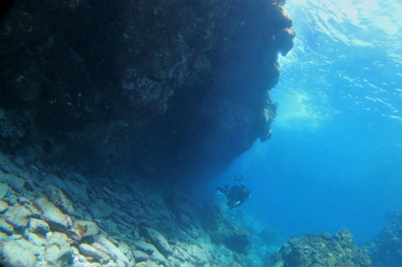沖縄 慶良間 慶良間諸島 ダイビング ファンダイビング ボートダイビング 体験ダイビング 自社船