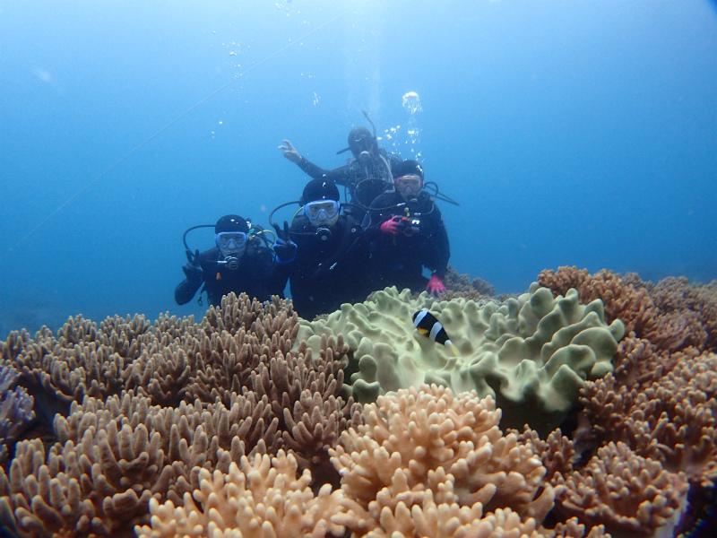 沖縄 沖縄本島 砂辺 北谷 ダイビング ボートダイビング ファンダイビング 体験ダイビング 自社船