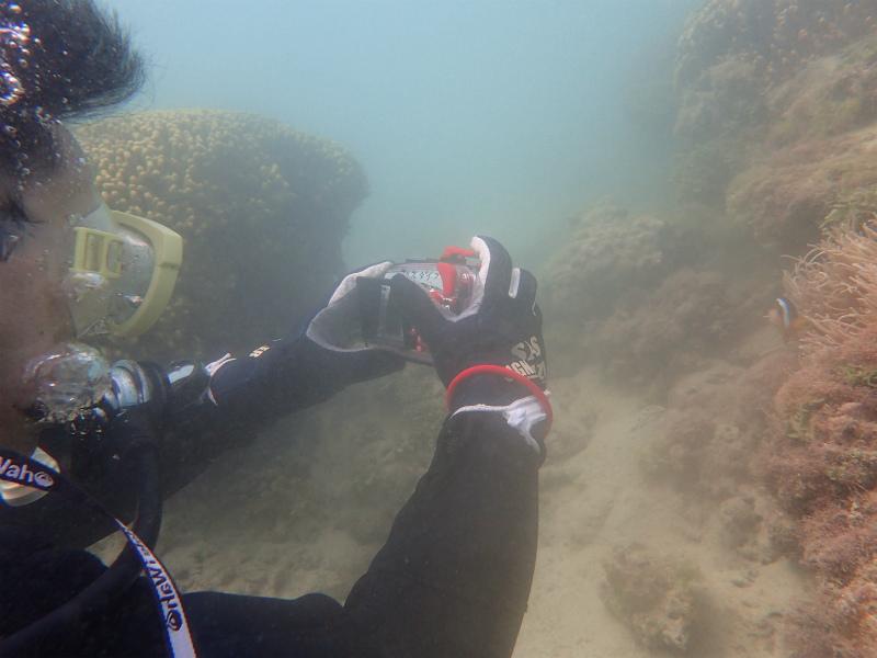 沖縄 ダイビング AOW 講習